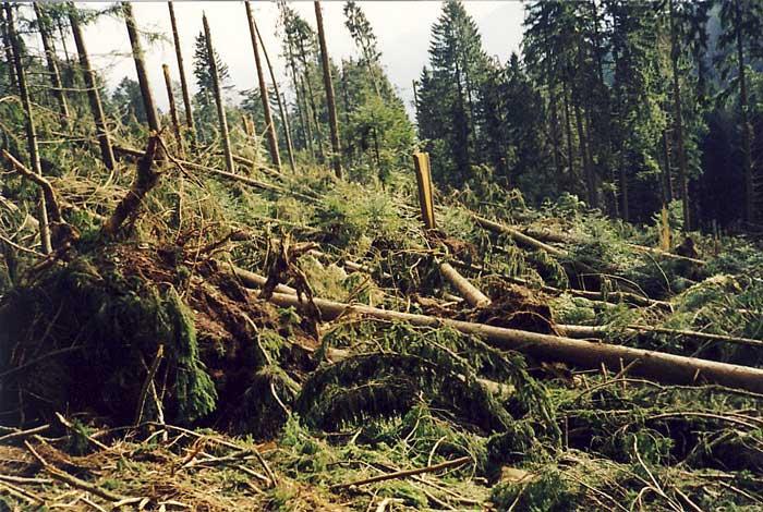 tempête de 1999